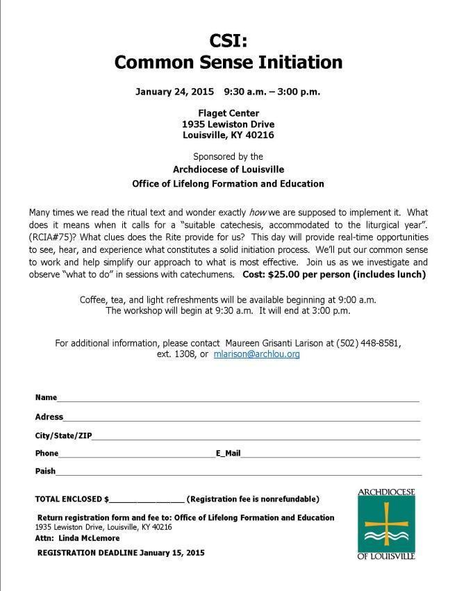 Team day flyer Jan 2015